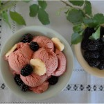 Blackberry banana ice cream (640x489)