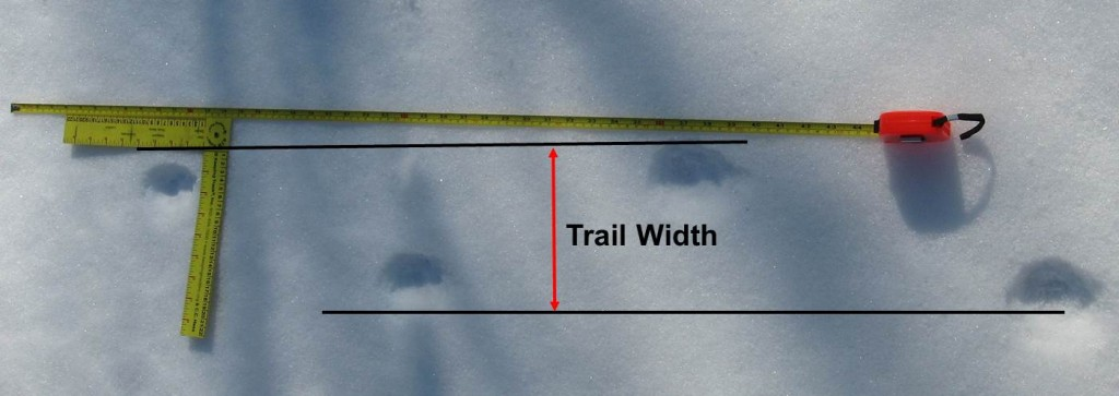 how to measure straddle when tracking bobcats