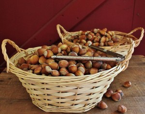 Two baskets of hazelnuts