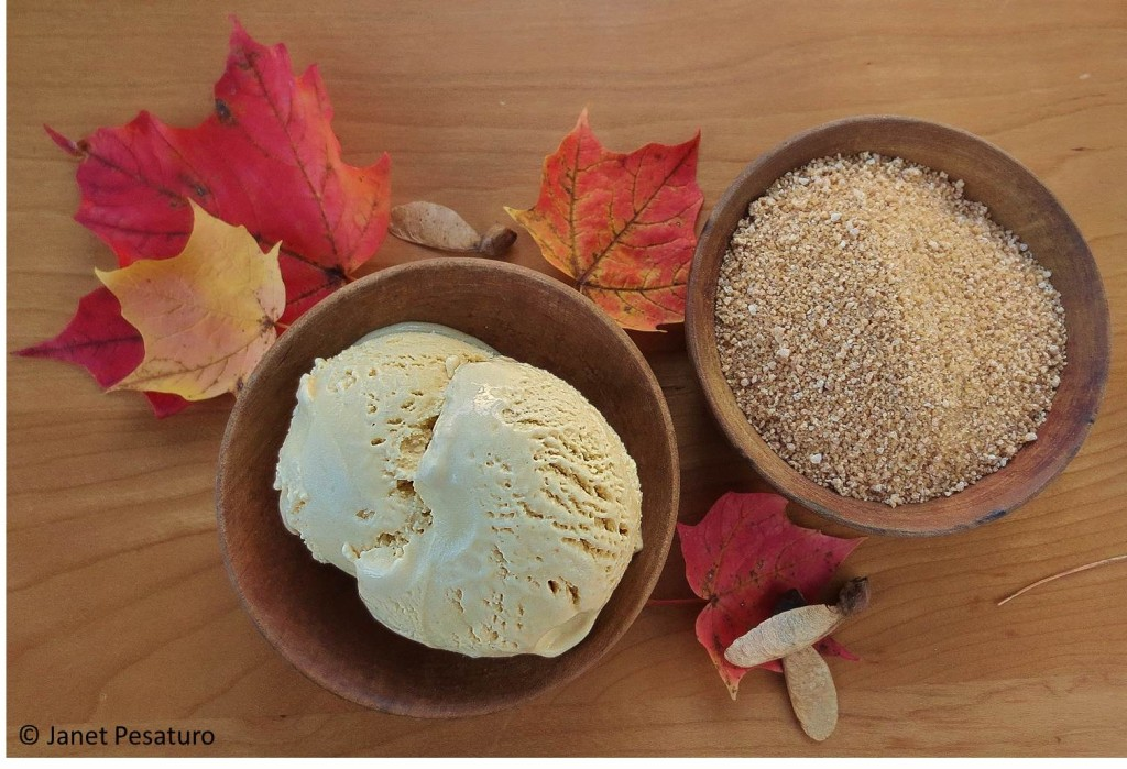 A bowl of maple ice cream and a bowl of maple sugar