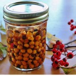 Washington hawthorn berries in a jar of vodka