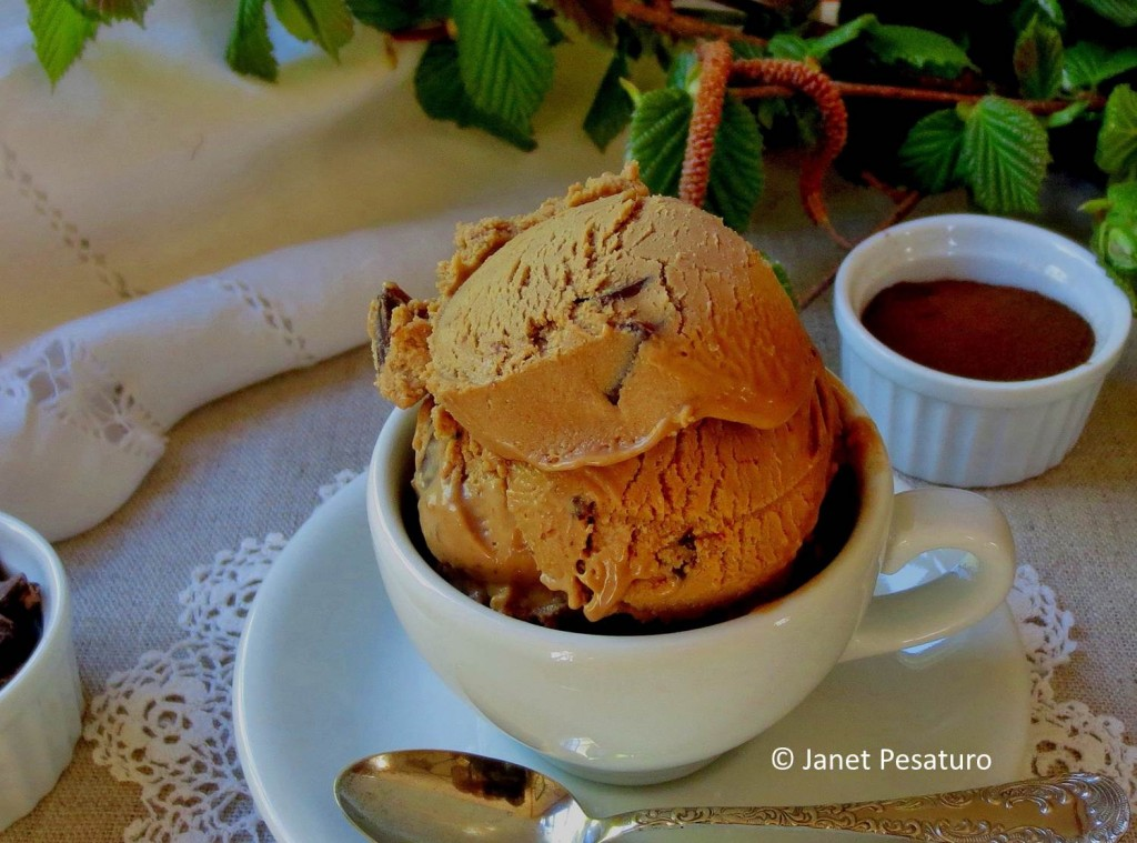 Mocha hazelnut butter ice cream with dark chocolate chips