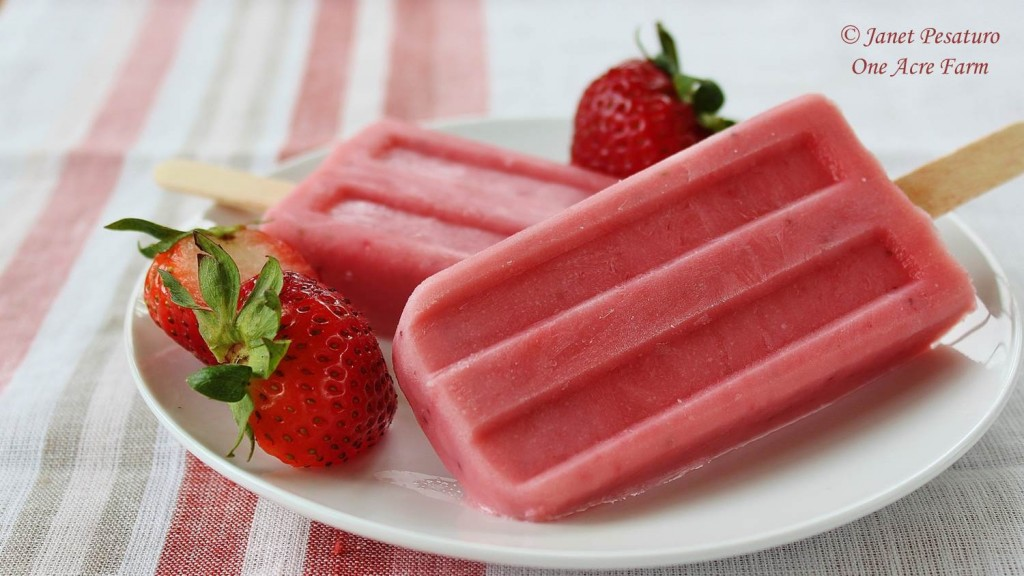 Strawberry knotweed yogurt popsicles