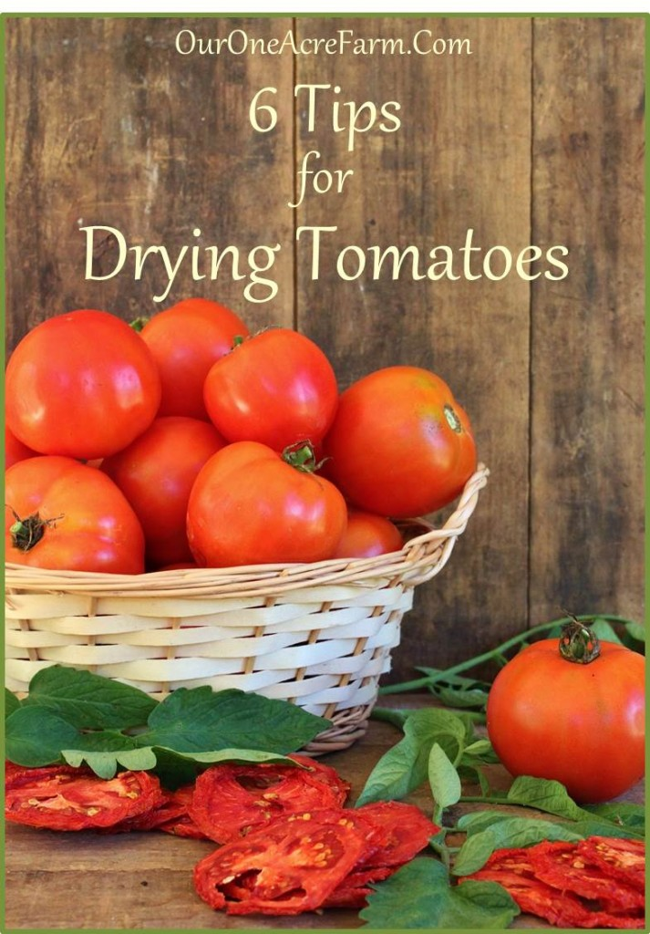 6 tips for drying tomatoes