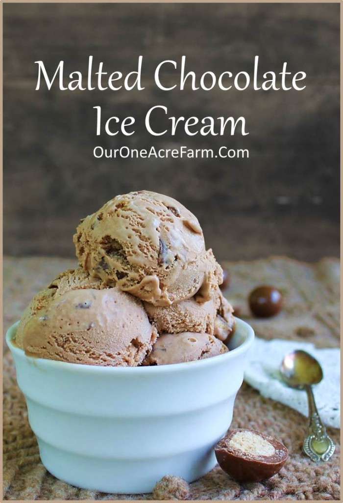 Malted Chocolate Ice Cream