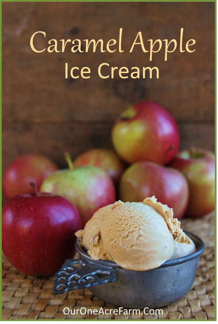 Apple Caramel Ice Cream Recipe — Dishmaps