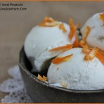 Foraging for spicebush and spicebush ice cream recipe