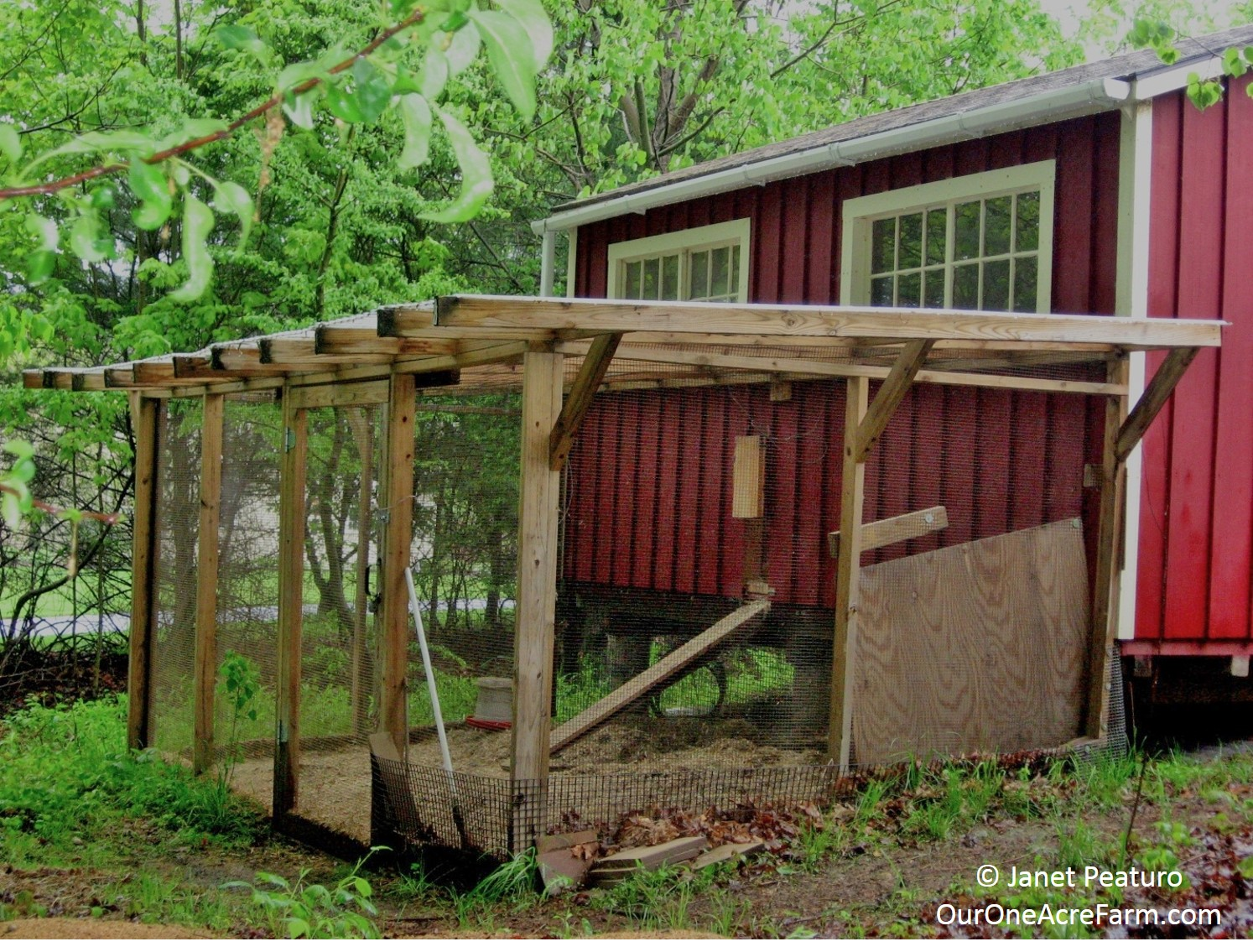 designing the perfect chicken coop - Chicken Coop Ideas Design