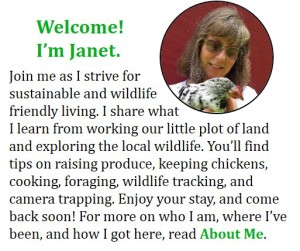 One Acre Farm About Me