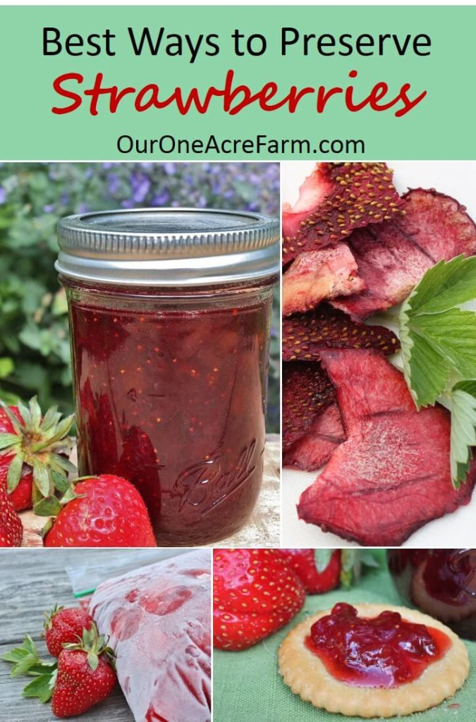 Preserving Strawberries Recipes Preserves Strawberry