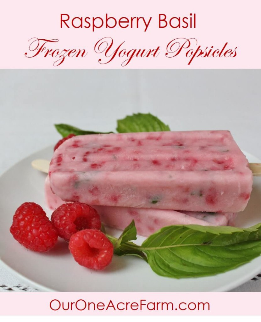 Easy, 4-ingredient Raspberry Basil Yogurt Pops are perfect for a hot summer day, when both the berries and basil are in season. Not too sweet, not too tart. The anise like flavor of the basil compliments the raspberries beautifully, and the green flecks are so pretty in the pink pops.