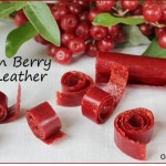Autumn Olive Fruit Leather