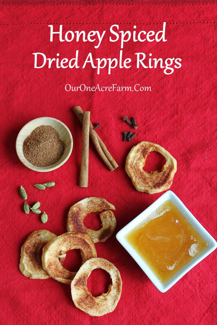 how to make dried apples without a dehydrator